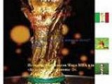 The Mauritius soccer