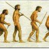 Эволюция от новичка до ветерана