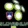 Чемпионат Европы-20. Превью: Словения