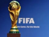 Организация чемпионата мира!