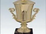 Обзор финала Masters Cup IV